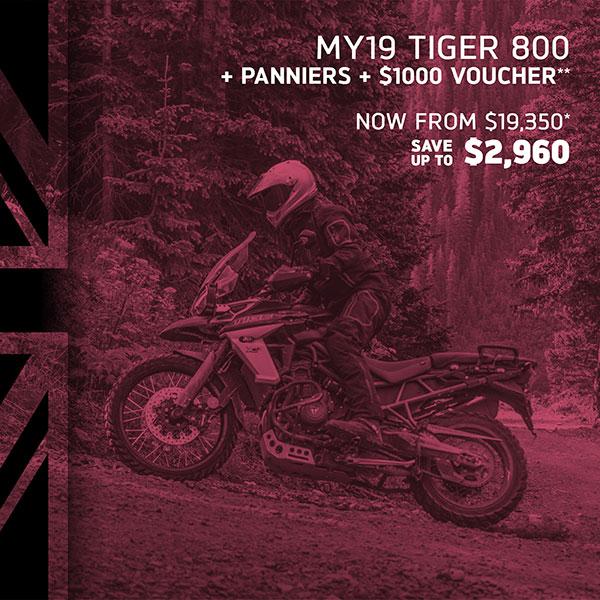 Tiger 800 on Sale