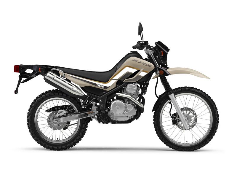 2019 XT250 on sale